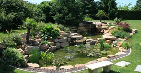 Dans nos prestations de nettoyage, nous proposons aussi : La décoration végétale de vos locaux … La location et l'entretien de plantes vertes … Le nettoyage des espaces verts En...